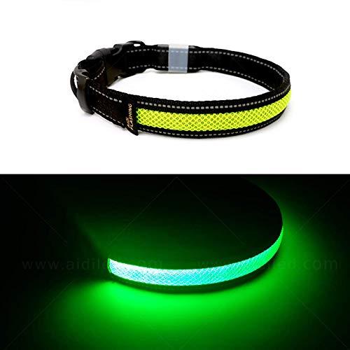 Toozey LED Leuchthalsband für Hunde mit 3 Beleuchtungsmodi, Einstellbare Länge und USB Aufladbar und Wasserdicht Nylon Leuchtendes Hundehalsband, Hohe Sicht und Sicherheit für Ihren Hund, Grün M