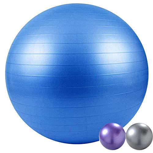 Natural Logistics Fitball 65-75cm. Pelota de Yoga, Pilates, Fitness (Azul, 65)