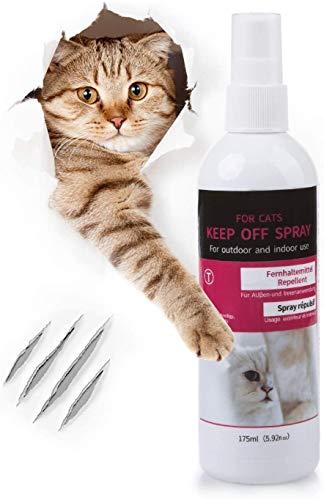 Petsvv Fernhaltespray Gegen Katzen und Hunde Anti Knabbern Anti Kau Spray Heimtraining Spray Gesundheit und Sicherheit,175 ml