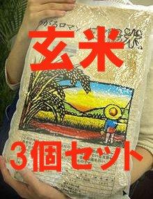 【送料込】ときわ村契約栽培米(つがるロマン) 玄米 15kg※自然農法米 (石抜き・籾抜き済み)
