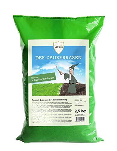 Linsor *Zauberrasen* Premium Rasensamen 2,5kg | Rasensamen schnellkeimend Grassamen schnellkeimend schnell wachsender Rasen Samen Rasen Saatgut Rasen Reparatur Rasennachsaat schnellkeimend