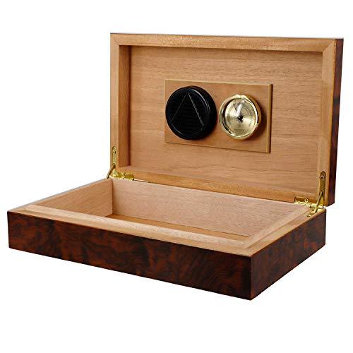 kogu Humidor schwarz, zum Lagern von ca. 10 Zigarren, inklusive Acrylpolymer-Befeuchter mit Polymerkristallen und Hygrometer