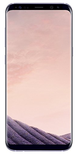 Samsung Galaxy S8+, 64GB, Orchid Gray - For AT&T (Renewed)