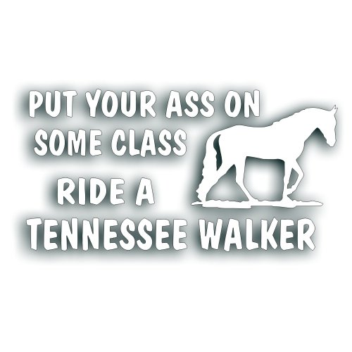 Put Your Ass On Some Class Ride A Tennessee Walker Horse Decal Sticker for Your Tack Box, Truck Or Horse Trailer - 5 x 10 Inch White