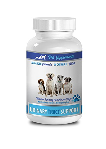 Dog Urinary chew - Dog Urinary Tract Support - Natural Cranberry Solution - Bladder Health - Vet Recommended - Cranberry Pills for Dogs - 1 Bottle (90 Treats)