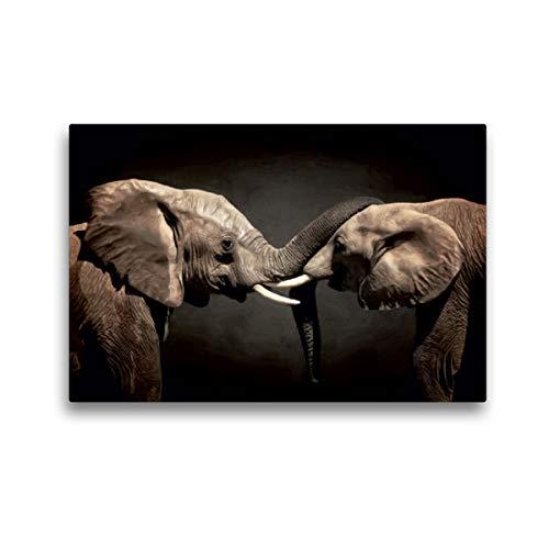CALVENDO Premium Textil-Leinwand 45 x 30 cm Quer-Format Two Elephants, Leinwanddruck von Angela Dölling, AD Design Photo + PhotoArt