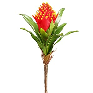 "Silk Flower Arrangements 12"" Silk Bromeliad Plant Flower Bush -Flame (Pack of 24)"