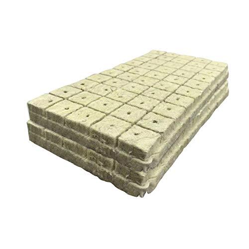 Jingtaihua 50 Cubos / 100 Cubos Cubos de Lana de Roca Cultivo hidropónico Cubos de Lana de Roca Cultivo sin Suelo Base de compresión Tapones de Inicio de Lana de Roca para hidroponía