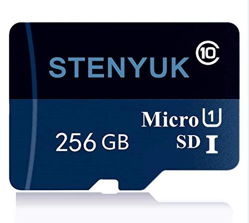 Tarjetas de memoria Micro SDXC Class 10 256 GB Memory SD Card Micro TF Card Transflash con adaptador de tarjeta SD para smartphones y otros dispositivos (256 GB)