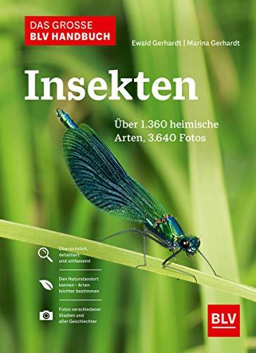 Das große BLV Handbuch Insekten: Über 1360 heimische Arten, 3640 Fotos (Natur)