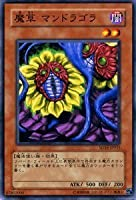 遊戯王カード 【 魔草 マンドラゴラ 】 SD16-JP015-N 《ストラクチャーデッキ-ロード・オブ・マジシャン》