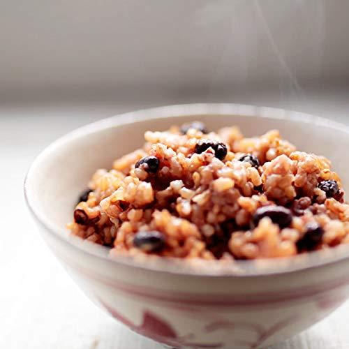 和日庵 酵素玄米 冷凍 おむすび もっちり熟成90g 21個 無農薬玄米