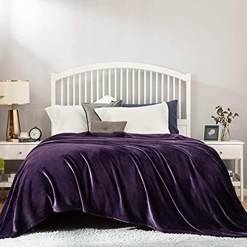 BEDSURE Plaid Couverture Polaire Violet Couvre-lit 220x240cm pour 2 Personnes - Plaid Douce et Chaude Jeté de Canapé Flanelle Grande Taille