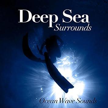 Deep Sea Surrounds