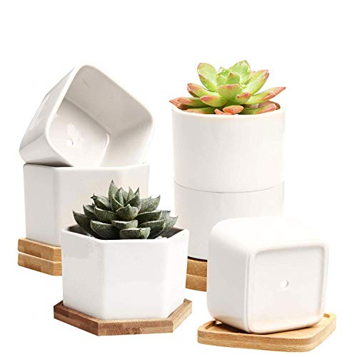 Small Succulent Pots,Ceramic Planter Pots,Mini Flower Pots with Drainage Hole,White Garden Pots with Bamboo Tray,Set of 6