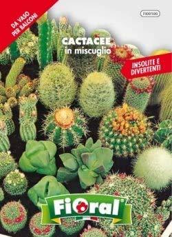 Sementi da fiore di qualità in bustina per uso amatoriale (CACTACEE IN MISCUGLIO)