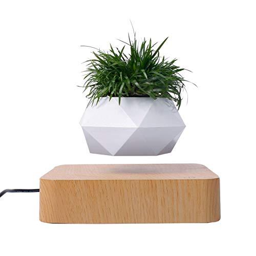 Maceta para bonsái de aire levitante, maceta de rotación, maceta flotante con suspensión de levitación magnética, maceta para decoración de escritorio del hogar en macetas y macetas de hogar y jardín