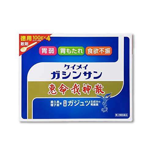 【第2類医薬品】恵命我神散 100g×4