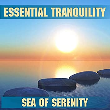 Tranquility - Sea Of Serenity