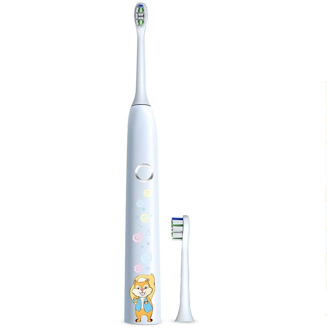 ビジネスグッゲンハイム美術館未満電動歯ブラシ 子供の電動歯ブラシ保護クリーンUSB充電式ソフトヘア歯ブラシ歯医者推奨 ケアー プロテクトクリーン (色 : 白, サイズ : Free size)