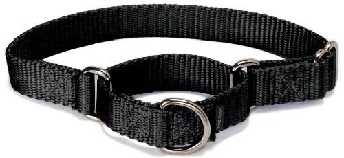 PetSafe Martingale Halsband, 1,9 cm, Größe M, Schwarz