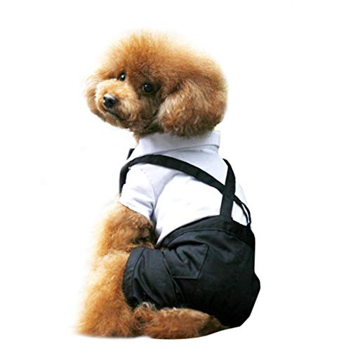 Kissherely Hund Smoking Anzug Schöne Welpen Hochzeit Outfit Hund Kostüm Pet Kleidung Mantel Overalls Heimtierbedarf (XXL)