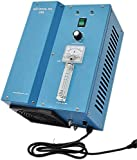 SP-3G Swimming Pool Ozone Generator Cleansing, Red eye Minimizer, Light Weight, Portable