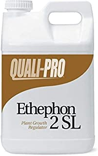 Quali-Pro Ethephon 2SL Plant Growth Regulator - Promotes Lateral Growth in Turf, Slows Growth in Turf Grass, Use for Elimination of Undesirable Fruit on Apple Trees (2.5 Gallons)