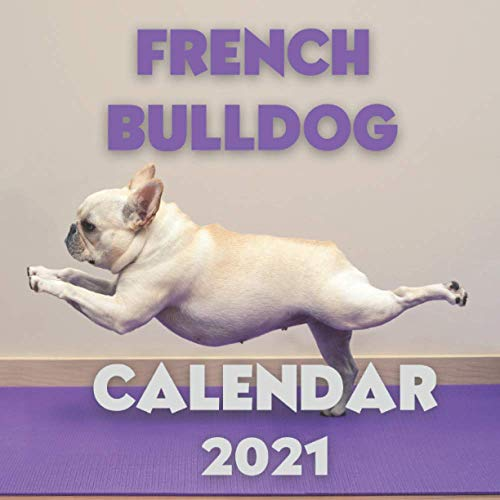 French Bulldog Calendar 2021: Wall Calendar for Dogs Lovers