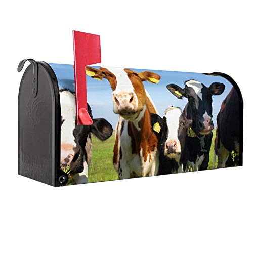 BANJADO US Mailbox | Amerikanischer Briefkasten 51x22x17cm | Letterbox Stahl schwarz | mit Motiv Kühe