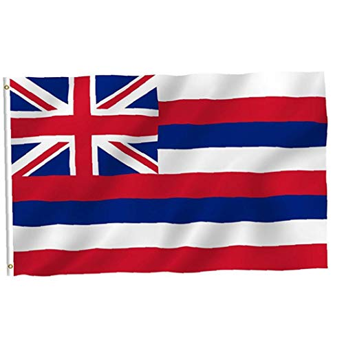 IUwnHceE Bandera del Estado de Hawaii práctica de la Bandera Polo Durable de la Bandera de Hawaii Ojal portátil de Metal para el Festival de Actividades 3 * 5 pies