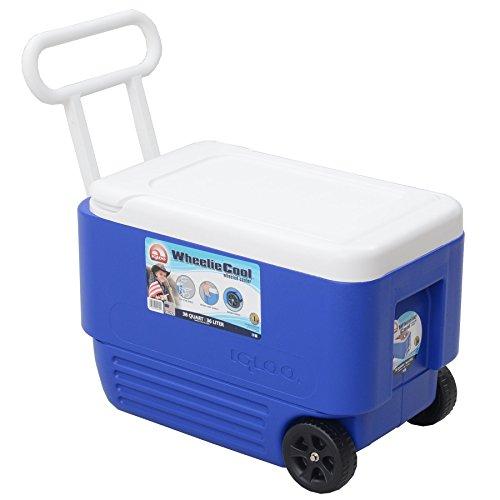 Igloo 38-Quart Wheelie Cool Cooler by Igloo