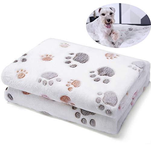 ALLISANDRO 350 GSM-Super Soft and Premium Fuzzy Flannel Fleece Pet Dog Blanket, The Cute Print...