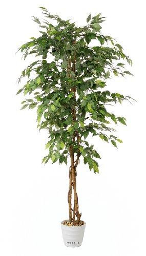 Artif-deco - Ficus artificiel abai h 180 cm 1134 superbes feuilles qualite pro - choisissez votre taille: h 180 cm