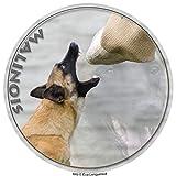 LUKKA Malinois - Pegatina de perro pastor belga (15 cm)