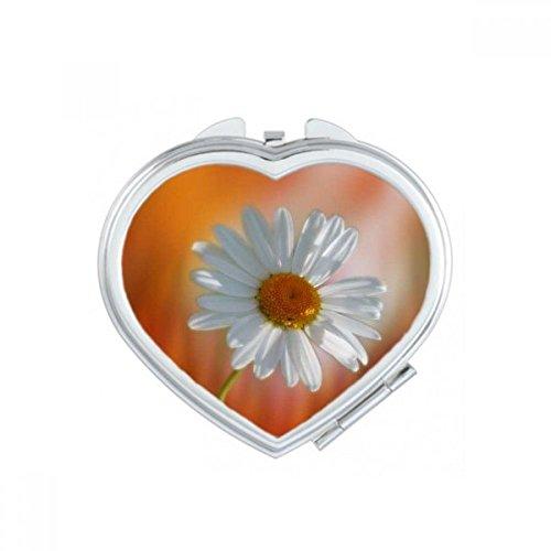 DIYthinker Bleu Ciel Rose Belle Fleurs de Coeur de Maquillage Compact Miroir de Poche Portable Mignon Petit Cadeau Miroirs Main Multicolor