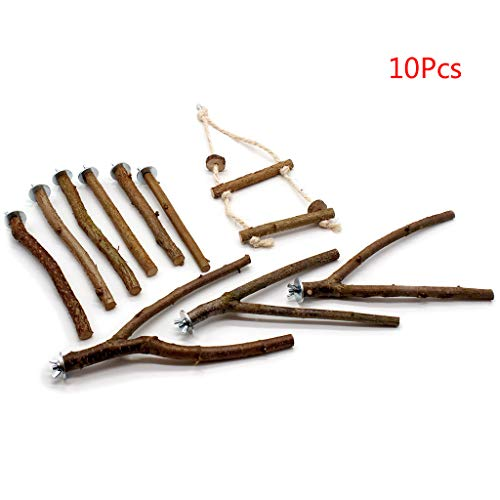 WEYCNCRIUF Bird Toy Set, Parrot Stand Rod Natural Wood Fork Perch Hanging Swing Pet Bird Chewing Toy Playground Set, 10Pcs
