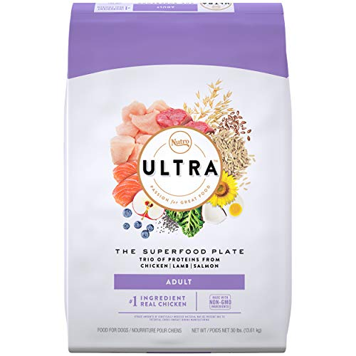 NUTRO ULTRA Adult High Protein Natural Dry Dog...