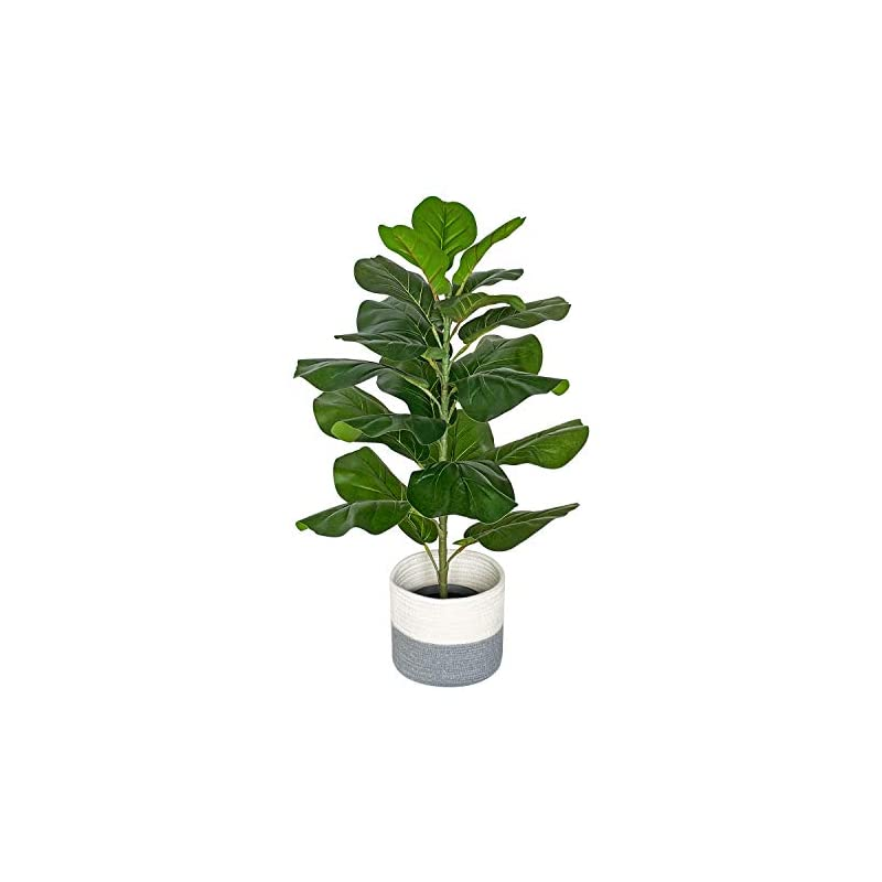 """silk flower arrangements besamenature artificial fiddle leaf fig tree/faux ficus lyrata for home office decoration, 30.8"""" tall, with cotton rope basket"""