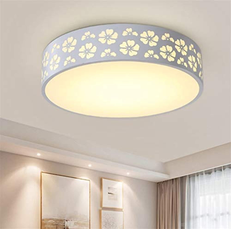 FuweiEncore Led deckenleuchte Moderne Schlafzimmer Lampe Balkon küche und Wohnzimmer Lampe Restaurant Studie Lampe runde Lampe 40 cm (Farbe   -, Gre   -)