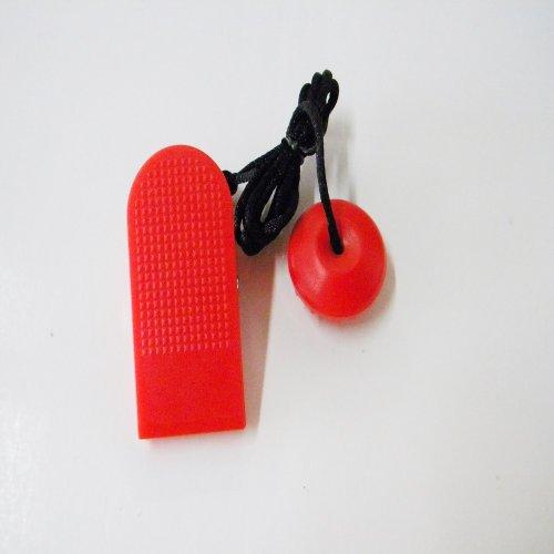 BowFlex Treadclimber Key TC 10