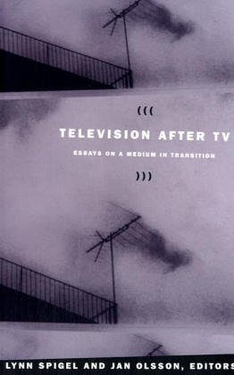 Television after TV: Essays on a Medium in Transition (Console-Ing Passions)