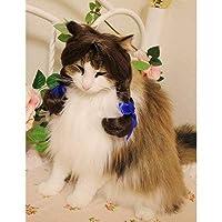 Wigs2you.com オリジナル 動物用 犬 猫 ペットウィッグ かつら コスチューム P-018 M 3.Neon Deep Orange