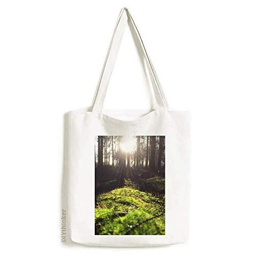 Bolsa de lona com paisagem da natureza da floresta, bolsa de compras casual