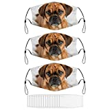 Dark Fawn Puggle Dog Laying Washable Animal Face Mask for Adult with 15 Filters