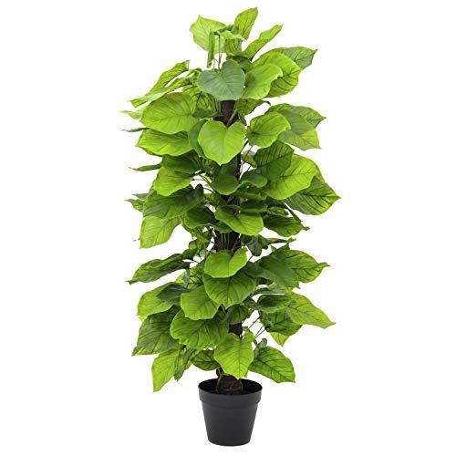 Pothos con Tronco de Fibra de Palmera, en Maceta, 125 cm - Planta Artificial/árbol sintético - artplants