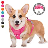 Best Front Range No-pull Dog Harnesses - BARKBAY No Pull Dog Harness Large Step in Review