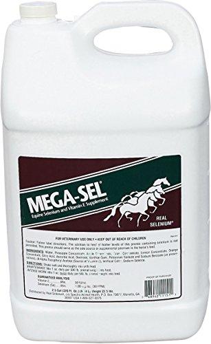 Spectra Animal Health Div 599840 Mega-Sel Liquid Formula for Horses, 2.5 Gallon