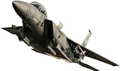 60% de descuento 1 72 72 72 F-15E Strike Eagle  Ace Combat Garuda 1   punto de venta de la marca