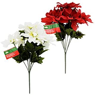 Best red and white poinsettia flowers Reviews